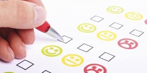 BuddyPress Survey