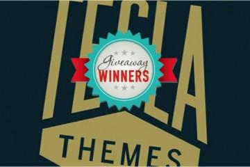 TeslaThemes Giveaway Winners