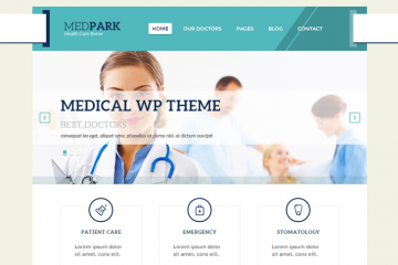 MedPark Theme Review