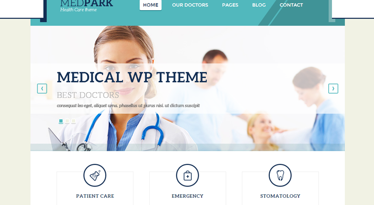 MedPark Theme Review