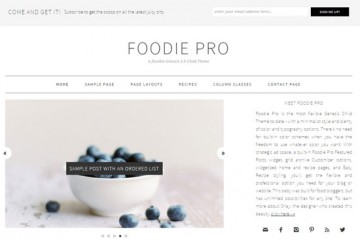 Foodie Pro Theme Review