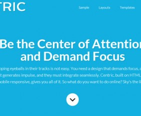 Centric Pro Theme Review
