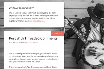 The 411 Pro Theme Review