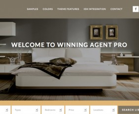 Winning Agent Pro Theme Review