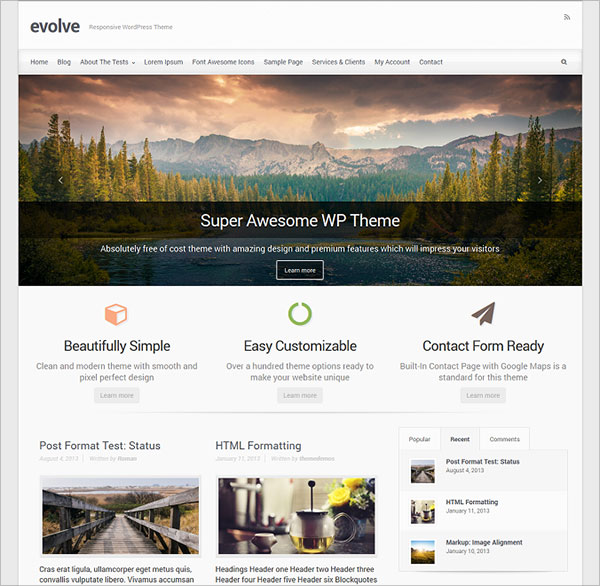 build small business websites using thesis wordpress theme