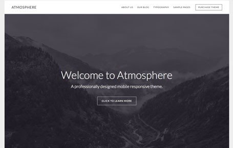 Atmosphere Pro Theme Review