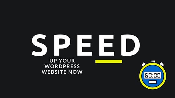 How To SpeedUp Your Wordpress Website
