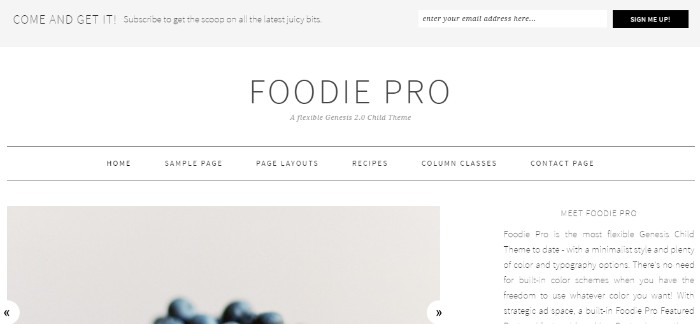 3-foodie-pro-theme-by-shay-bocks-clipular